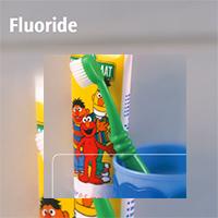 Je bekijkt nu Brochure: fluoride